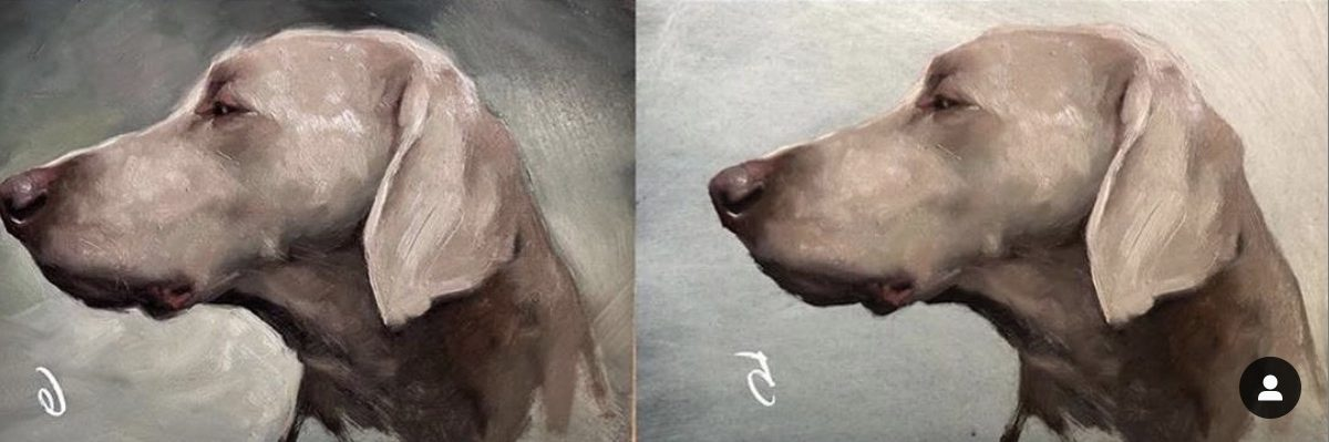 Jennifer Gennari: LIVE: Animal Portraits (Online)