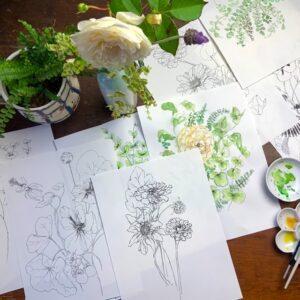 Seasonal Flora Drawing