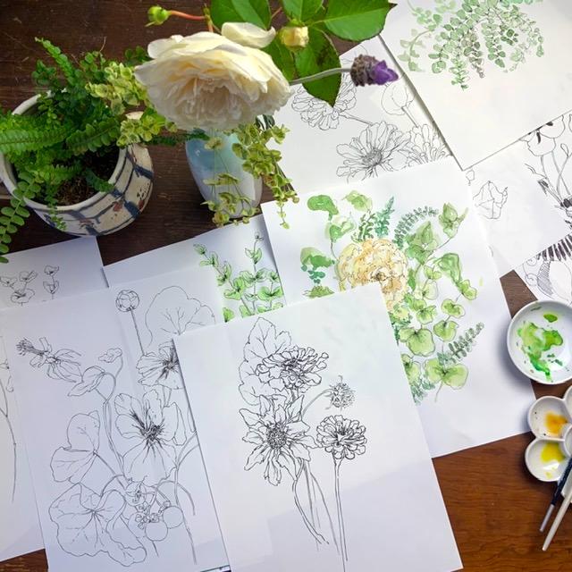 NEW SESSION: Seasonal Flora Drawing