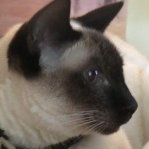 Profile photo of Wendy